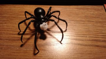 black_widow_spider_6